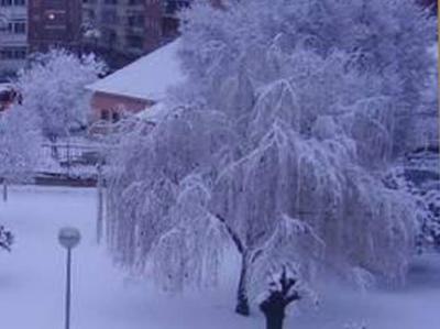 Silencio: Nieva