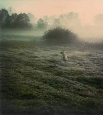 Fotografía de Andrei Tarkovski